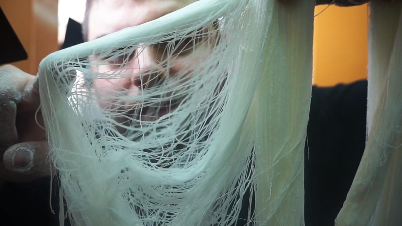 Pilopi barba de dragón proceso resultado