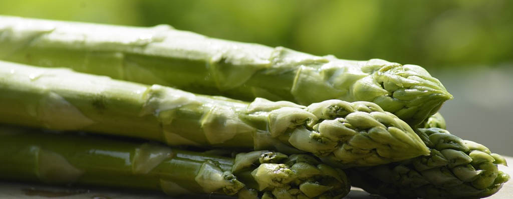 esparragos verdes trigueros