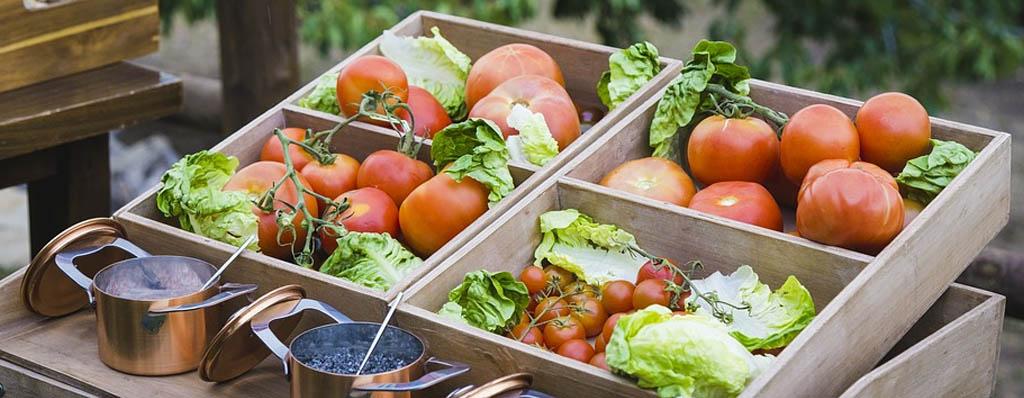 productos frescos huerta tomates