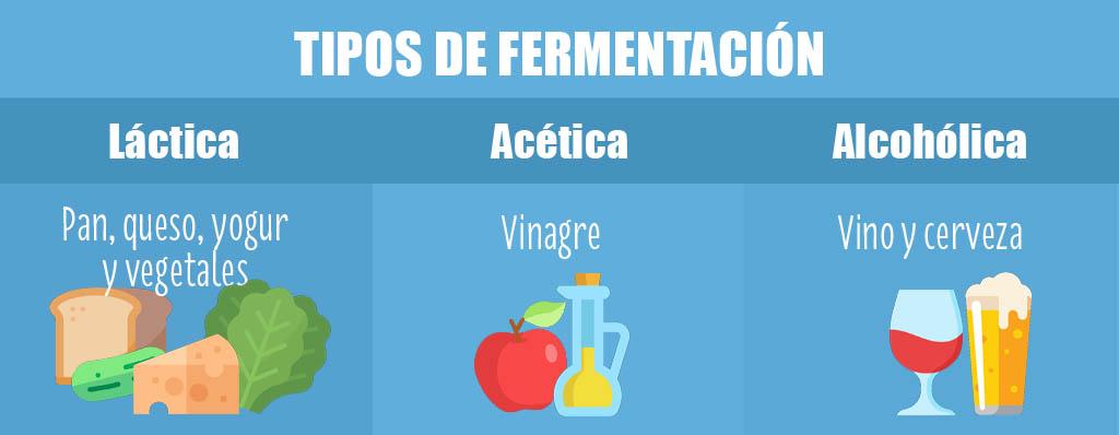 infografía fermentación